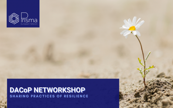 DACoP Networkshop: Sharing Practices of Resilience